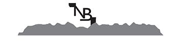 Nicky Bamber logo